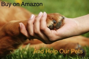 AMAZON DOG PIC_FOR LINK