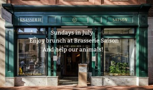 Brasserie Saison website